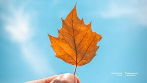 We love this time of year, but autumn can bring health challenges. Here are some helpful tips.